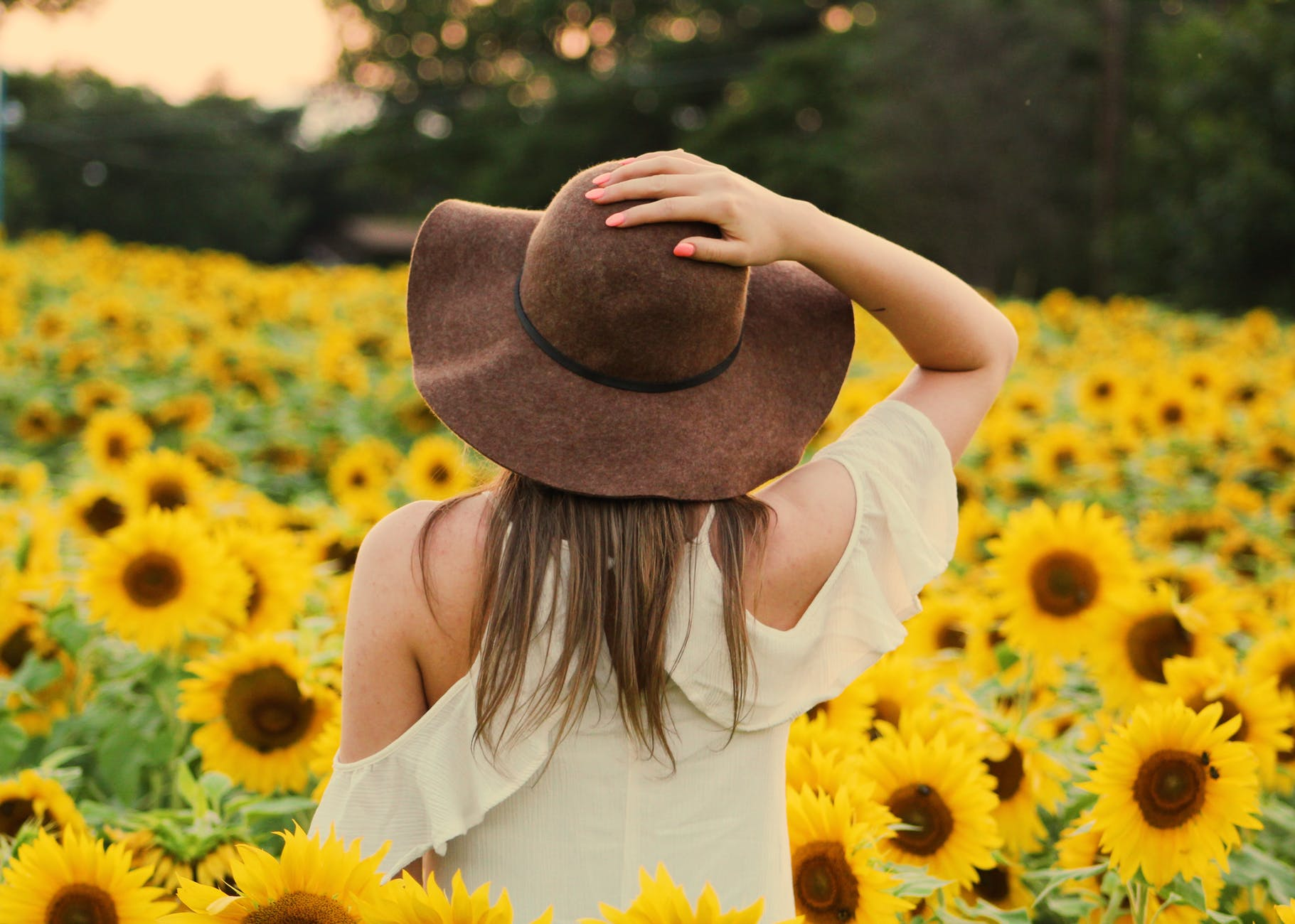 photo of woman in a sunflower field
