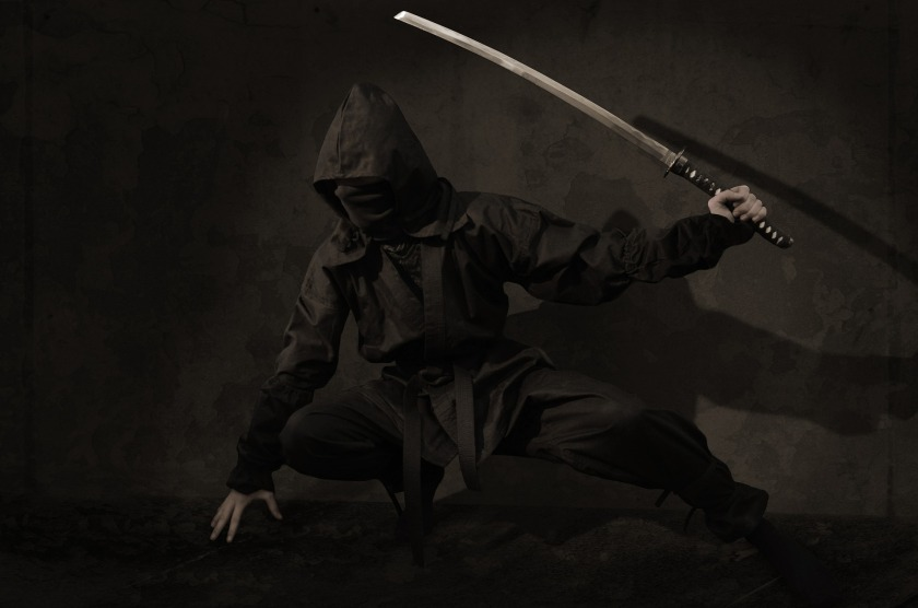 ninja-2007576_1920